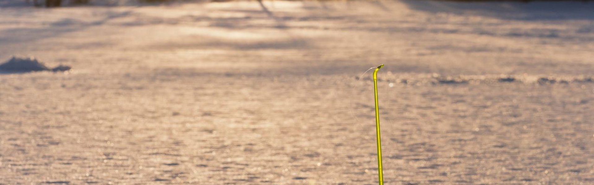 Зимние рыболовные туры на снегоходах в 2021/2022 году!