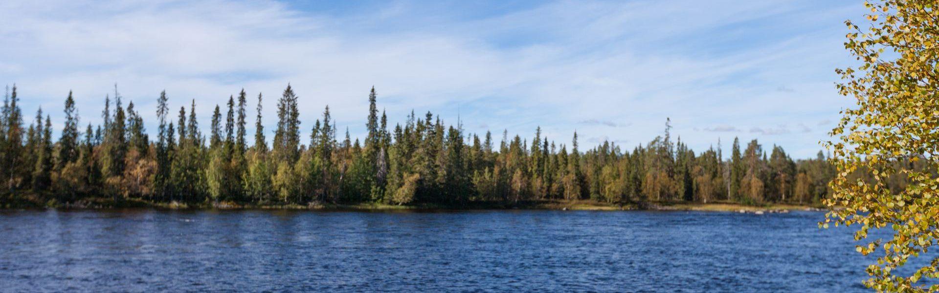 Сезон летних рыбалок на Кольском полуострове 2020